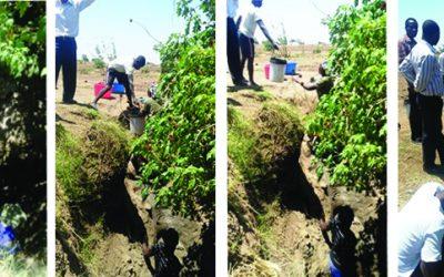 Malawi Borehole